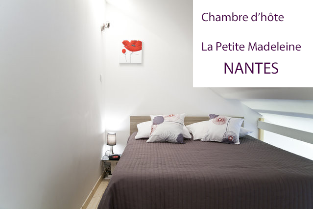 chambre d 39 h te de charme dans nantes centre la petite madeleine. Black Bedroom Furniture Sets. Home Design Ideas